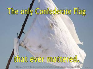 OnlyConfederateFlag